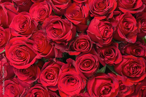 Colorful flower bouquet from red roses for use as background. - 67561194