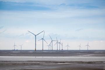 wind farm in mud flat