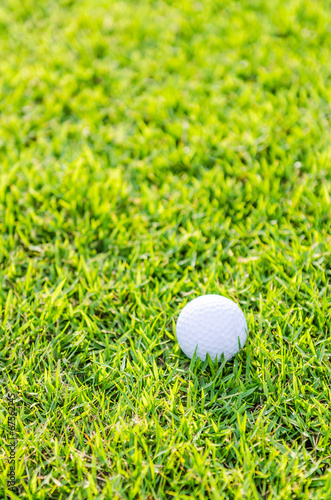 canvas print picture Golf ball on green grass