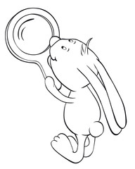 Rabbit and magnifier