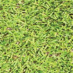 grass0001