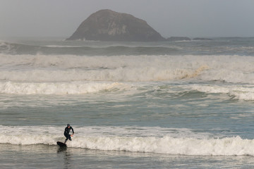 surfer riding wave at Muriwai beach, New Zealand