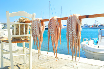 Octopus drying in the sun, Naxos island, Cyclades, Greece
