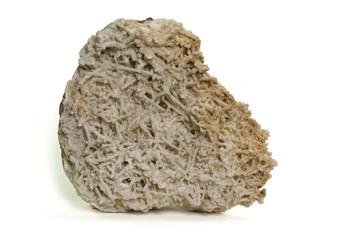 Coroidal calcite. 26cm across.