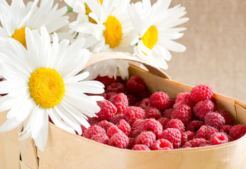 Raspberries and daisies