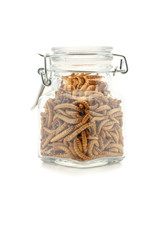 Freezer dried mealworms in jar.