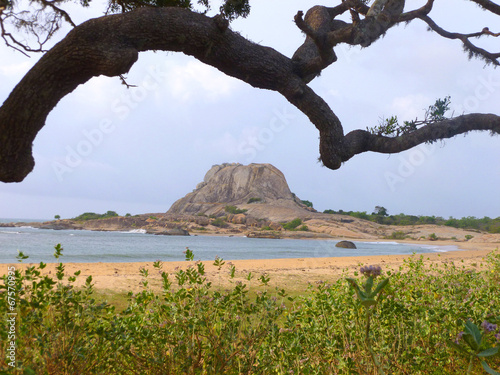 canvas print picture Yala Nationalpark