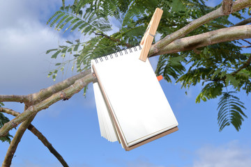 Notebook hanging from a tree