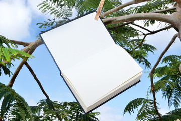Book and notebook hanging from a tree