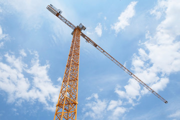 The image of crane