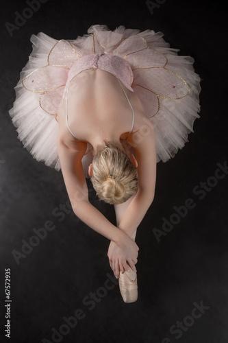 Fototapeta Graceful ballerina bending forward in pink tutu