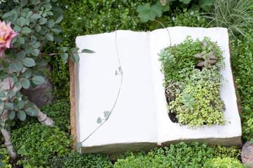 庭 植物 ガーデニングイメージ
