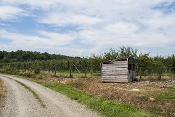 Shed by Gravel Road