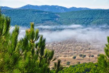 Sierra Madrona, Valle del Escorial, niebla, naturaleza