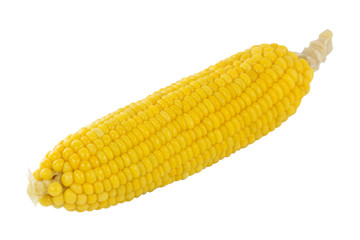 Fresh cook corn