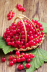 Red currants in basket on table