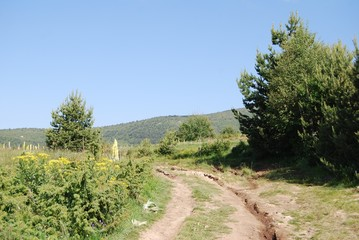 Road in The Osogovo Mountains