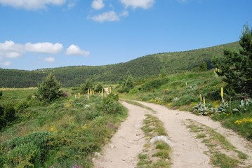 Mountain road in The Osogovo Mount