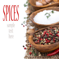 hot pepper, sea salt and spices in bowls, isolated
