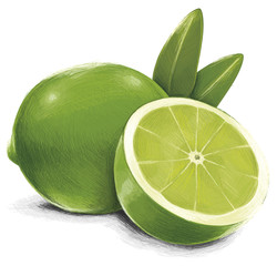 Isolated Lime Fruit