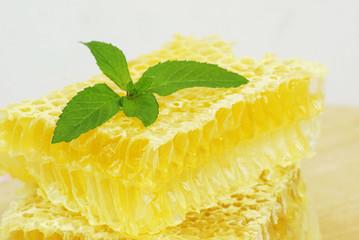 organic honeycombs