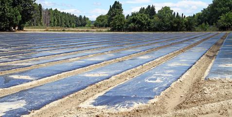Préparation agricuture
