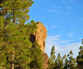 Roque Nublo among pines and blue sky, Gran Canaria