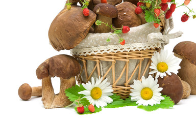 still life with wild mushrooms, strawberries and daisies on a wh
