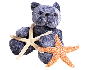 Starfish and Stuffed Animal