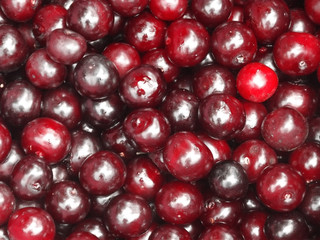 Bright background of ripe cherries