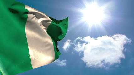 Nigeria national flag waving