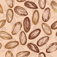 Almonds seamless vector background