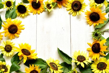 Sun flowers on white wooden background