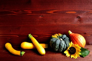 Pumpkins,zucchini and sun flower