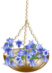 hanging basket