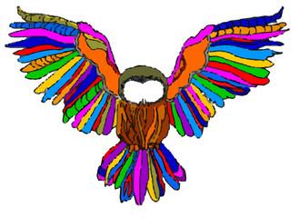 gufo multicolor su sfondo bianco