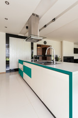 Modern open kitchen