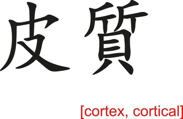 Chinese Sign for cortex, cortical
