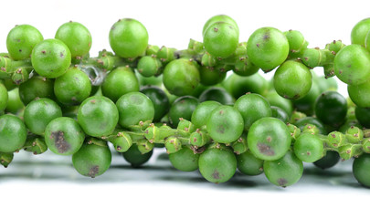 green peppercorns on white background