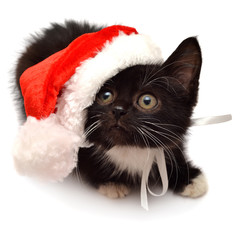 Little kitten with Santa Claus hat