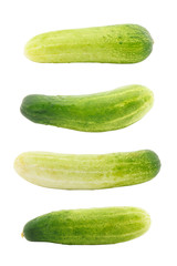 Set of cucumber isolated