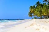Fototapety Sandy beach in the Dominican Republic.
