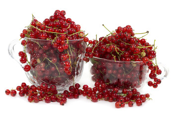 Red currant in two glass bowls isolated