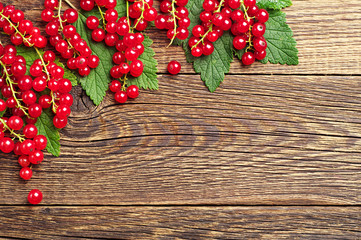Background with red currants