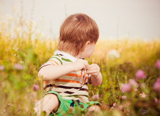 boy at summer meadow