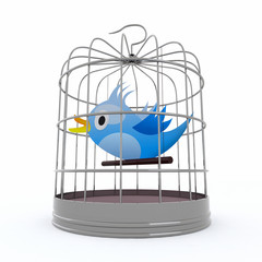 blue bird inside the cage that tweets