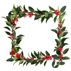 Holly Berry Border