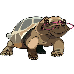 brown tortoise with glasses