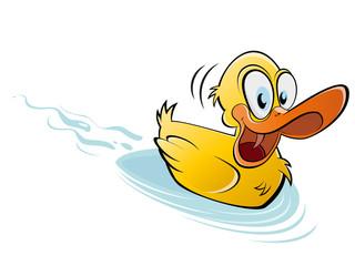 ente teich schwimmen gelb