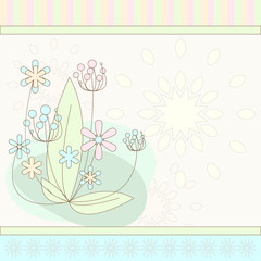 flowers on soft background